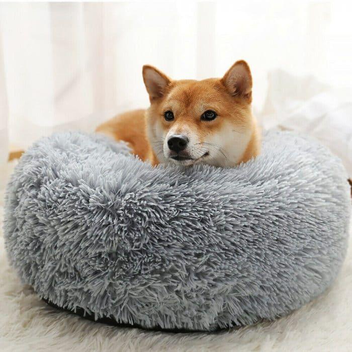 Calming-Pet-Bed_IMG12